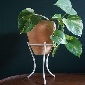 vtg white metal hairpin leg plant stand